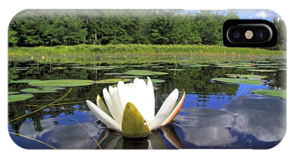 White Waterlily On A Lake IPhone Case