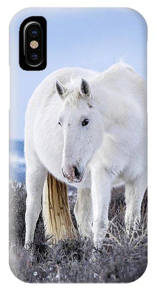 White Wild Horse Mystic Of Sand Wash Basin IPhone Case