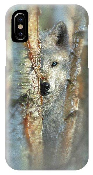 White Wolf Focused IPhone Case