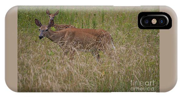 Whitetail With Fawn 20120707_09a IPhone Case