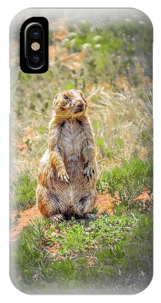 Who Dat? IPhone Case