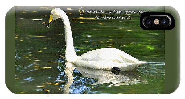 Donation iPhone Case - Whooper Swan Gratitude by Diane E Berry