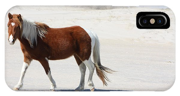 Wild Assateague Ponies 2 IPhone Case