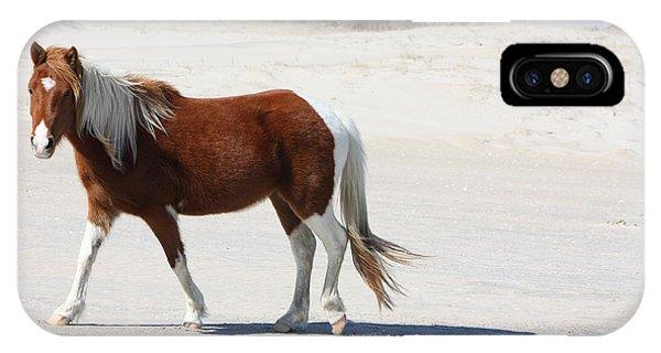 Wild Assateague Ponies 2 IPhone Case