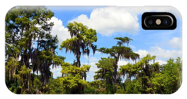 Wakulla iPhone Case - Wild Beauty On The Wakulla River by Carla Parris