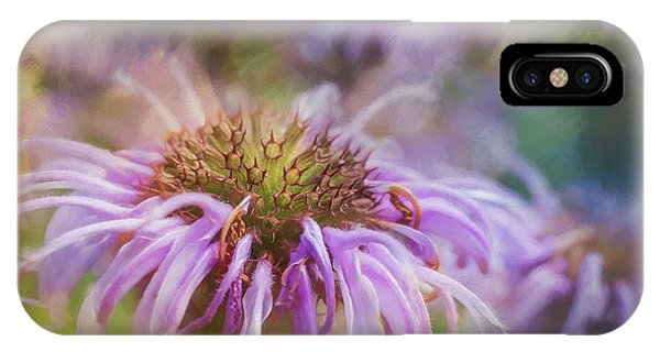 Wild Bergamot IPhone Case