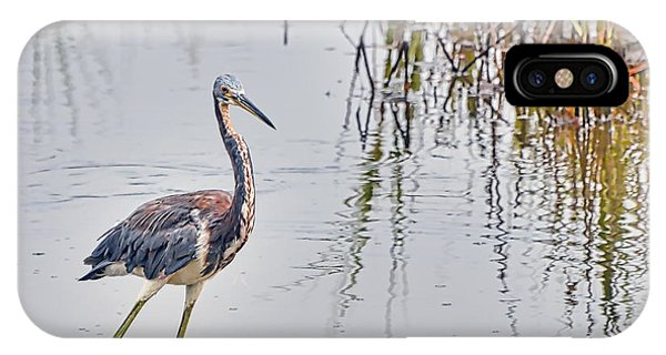 Wild Birds - Tricolored Heron IPhone Case