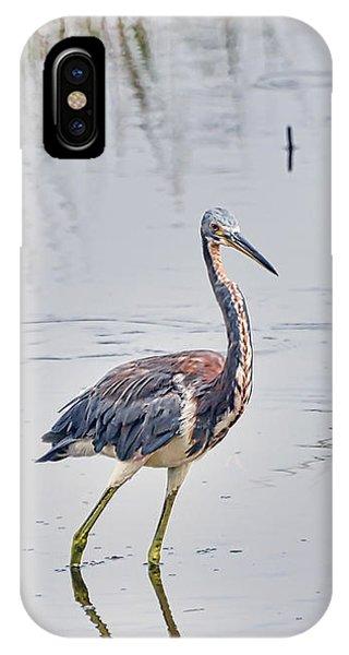 Wild Birds - Tricolored Heron IPhone Case
