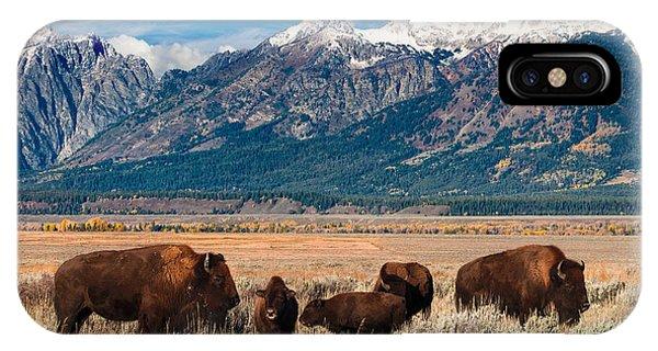 Wild Bison On The Open Range IPhone Case