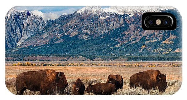 Wild Bison On The Open Range IPhone Case
