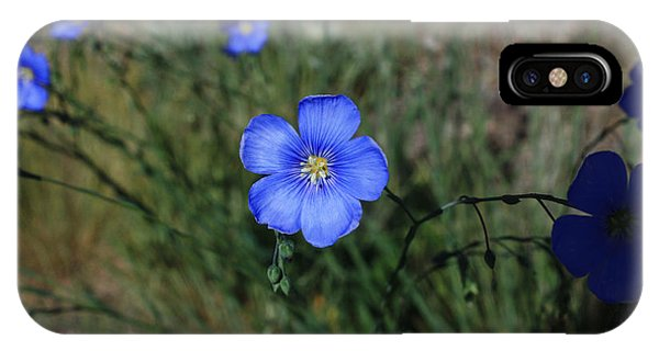 Wild Blue Flax IPhone Case