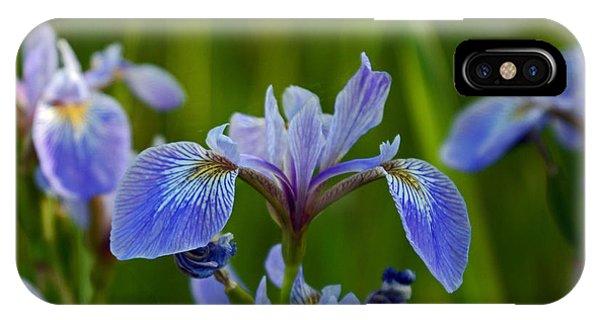 Wild Blue Iris IPhone Case