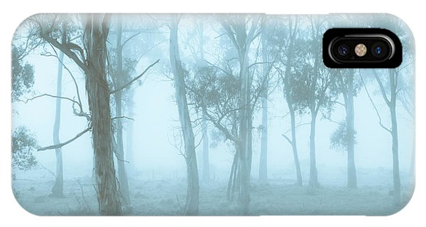 Morning Mist iPhone Case - Wild Blue Woodland by Jorgo Photography - Wall Art Gallery
