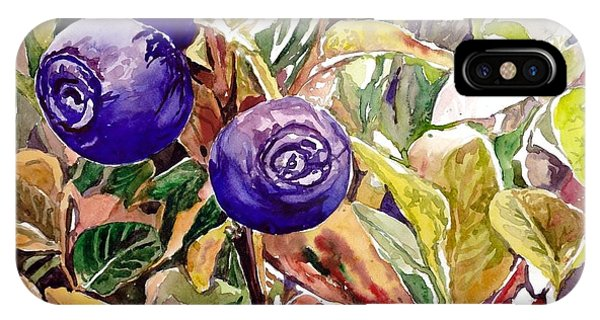 New Jersey iPhone Case - Wild Blueberries by Suzann's Art