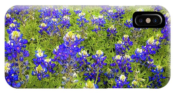Wild Bluebonnets Blooming IPhone Case