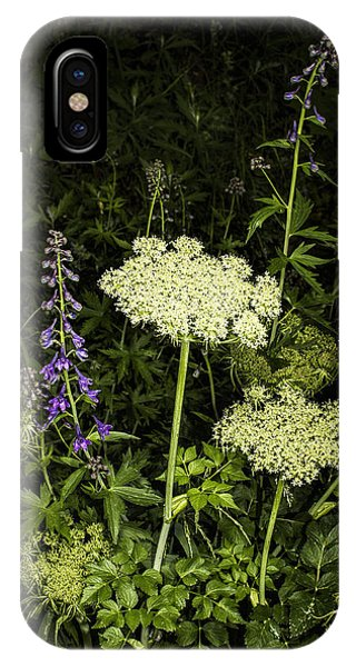 Wild Celery And Larkspur IPhone Case