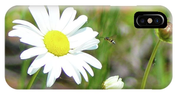 Wild Daisy With Visitor IPhone Case