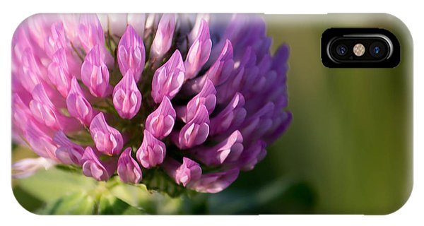 Wild Flower Bloom  IPhone Case