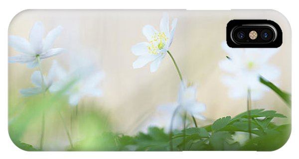 wild flower carpet - Anemone nemerosa IPhone Case