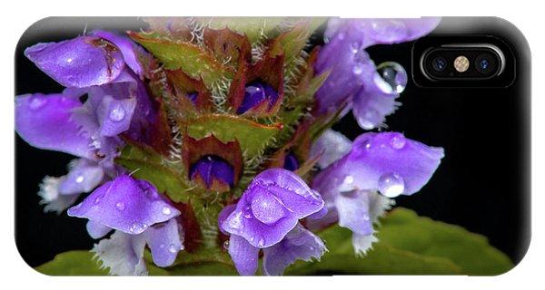 Wild Flower Portrait IPhone Case