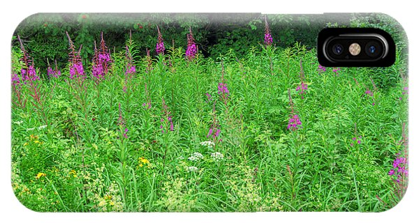 Wild Flowers And Shrubs In Vogelsberg IPhone Case