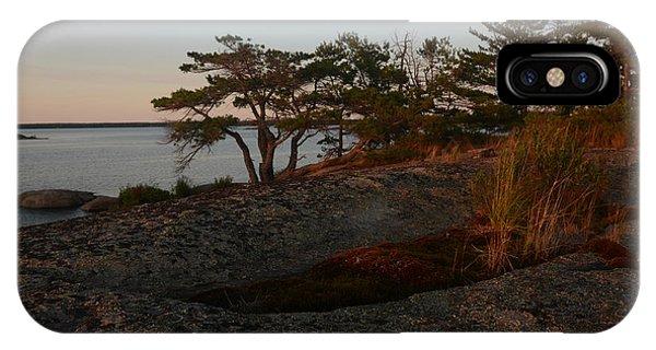 Wild Grass At Sunset - Georgian Bay IPhone Case