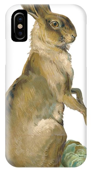 iPhone Case - Wild Hare by ReInVintaged
