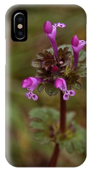 Wild Henbit Flower Loganville Georgia IPhone Case