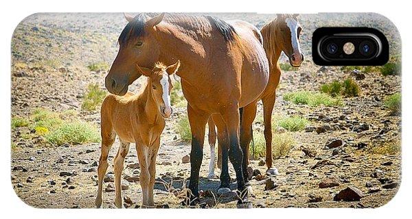 Wild Horse Family IPhone Case
