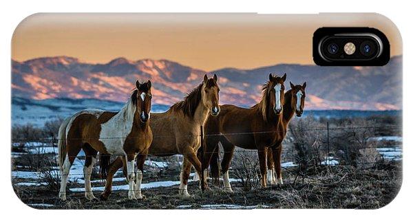 Wild Horse Group IPhone Case