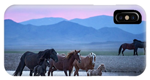 Wild Horse Sunrise IPhone Case