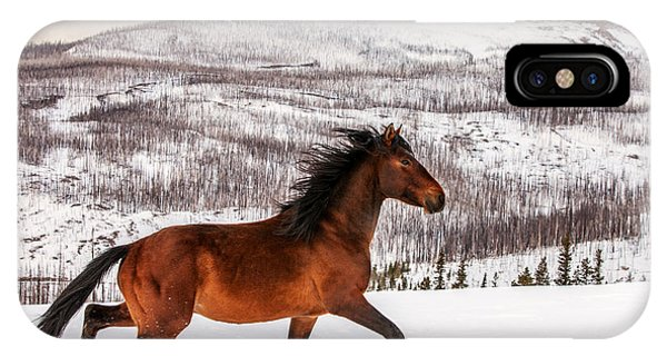 Winter iPhone Case - Wild Horse by Todd Klassy
