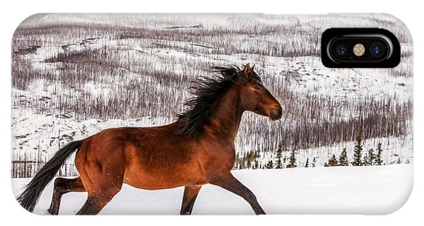 Horse iPhone X / XS Case - Wild Horse by Todd Klassy
