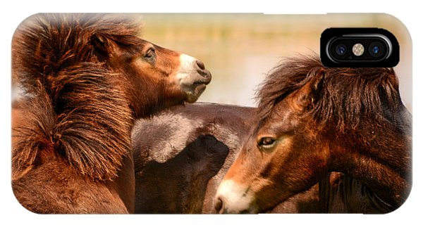 Wild Horses 5 IPhone Case