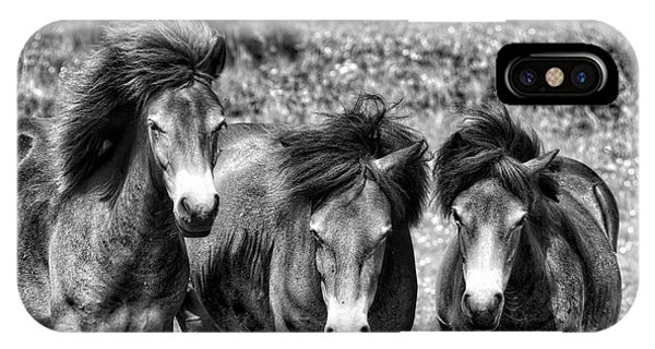 Wild Horses Bw1 IPhone Case