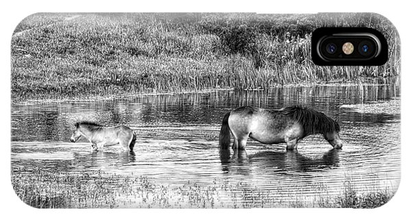 Wild Horses Bw2 IPhone Case
