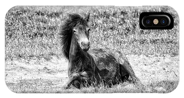 Wild Horses Bw3 IPhone Case