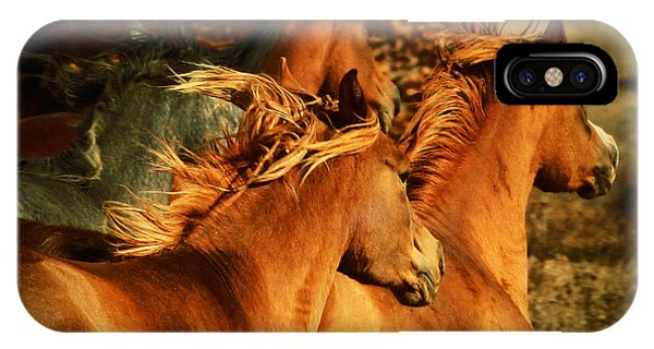 Wild Horses IPhone Case