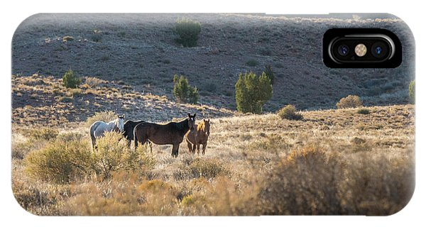 Wild Horses In Monument Valley IPhone Case