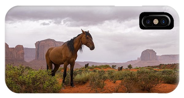Wild Horses Of Monument Valley IPhone Case