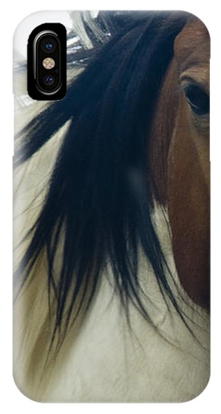 IPhone Case featuring the photograph Wild Horses Of Nevada 1 by Catherine Sobredo
