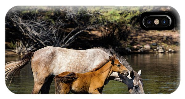 Wild Horses On The Salt River IPhone Case