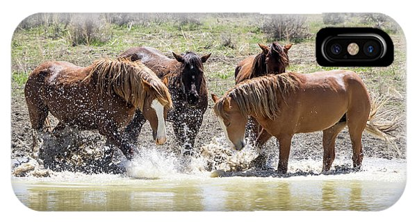 Wild Mustang Stallions Playing In The Water - Sand Wash Basin IPhone Case
