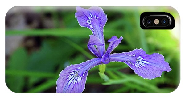 IPhone Case featuring the photograph Wild Iris by Ben Upham III