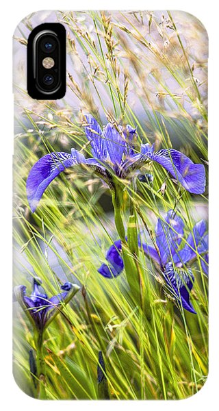 Wild Irises IPhone Case