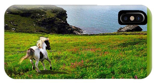 Wild Little Pony IPhone Case