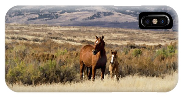 Wild Mare With Young Foal In Sand Wash Basin IPhone Case