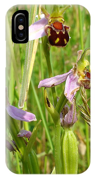 Wild Meadow Bee Orchids IPhone Case