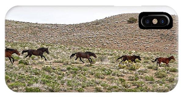 Wild Mustang Herd Running IPhone Case