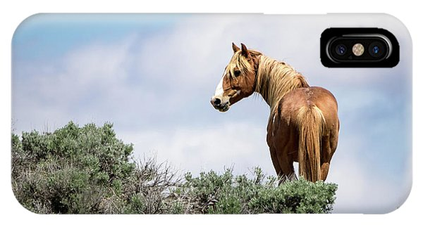 Wild Mustang Stallion Of Sand Wash Basin IPhone Case